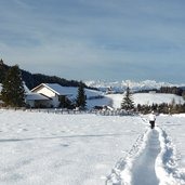 wanderweg bei petersberger leger winter