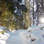 D-5032-weg-von-moos-zur-nemeshuette-winter.jpg