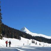 D-5163-sausbeerwald-dahinter-knieberg-winter-wanderer-nahe-nemesalm.jpg