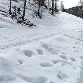 D-5316-reinswald-weg-nr-7-winter.jpg