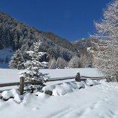 D-6474-avignatal-winter-neuschnee-auf-baeumen.jpg