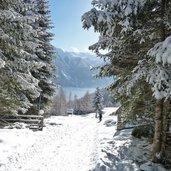 D-6480-avignatal-winter.jpg