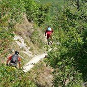 weg trail von morter nach obermontani mountain biker downhill