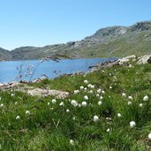 D_RS158941_C-4083-langsee-spronser-seen.jpg