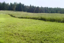 suedtirols sueden deutschnofen panorama new