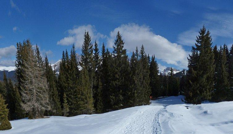 Neve sull'Alpe di Siusi